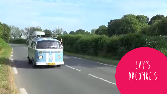 Droomreis VW bus