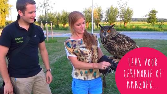 roofvogels voor ceremonie of aanzoek